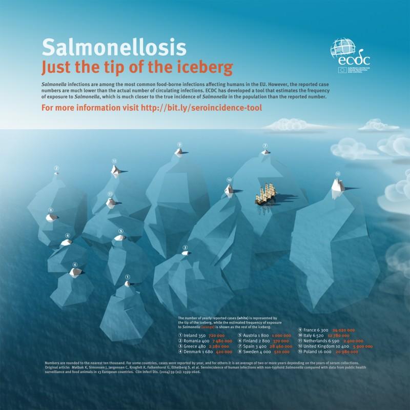ECDC_Infographic_Salmonelosis_1500px-800x800